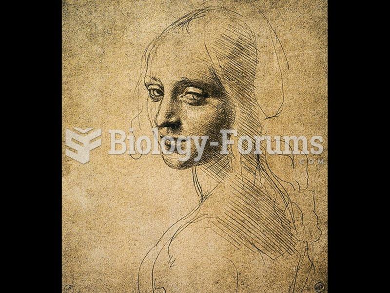 Leonardo da Vinci, Study of a Woman's Head or of the Angel of the Vergine delle Rocce.
