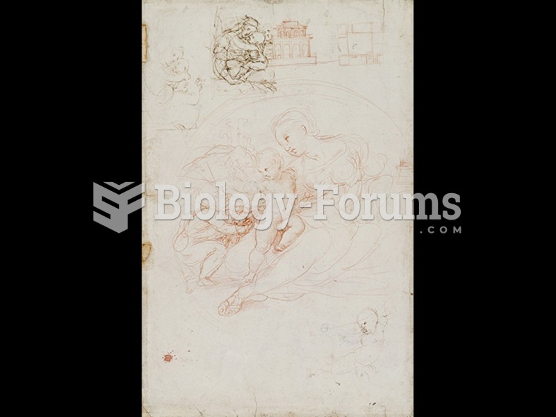 Raphael, Studies for The Alba Madonna (verso).