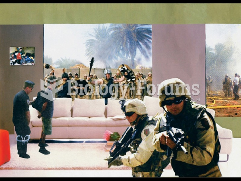 Martha Rosler, Gladiators, from the series House Beautiful: Bringing the War Home. 2004