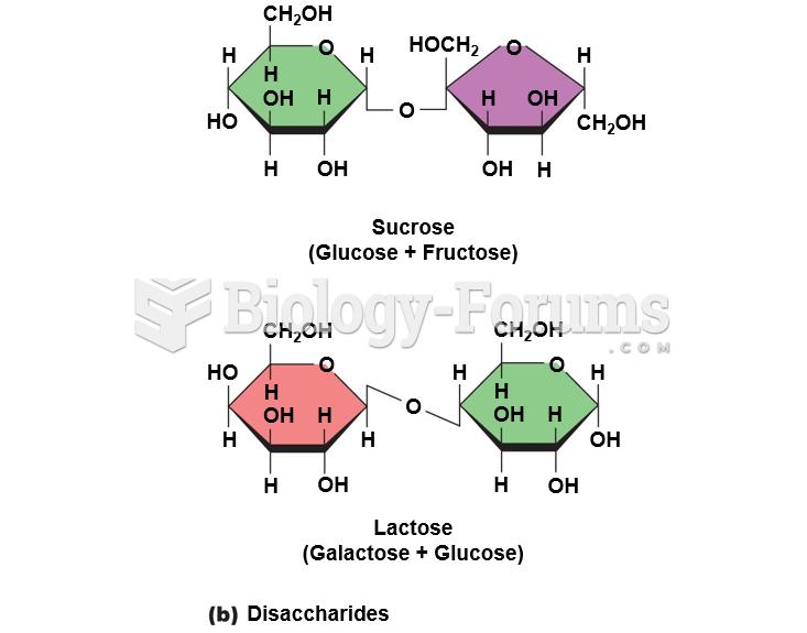 Disaccharides Diagram