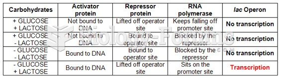 Lactose Operon Summary Chart