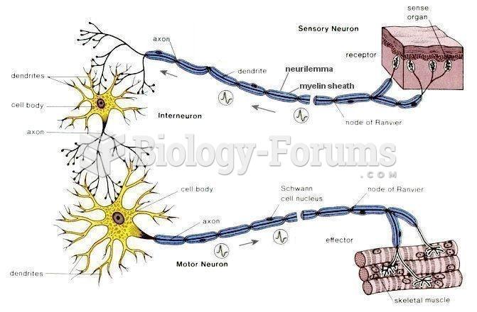 Sensory, motor, interneuron, and effector