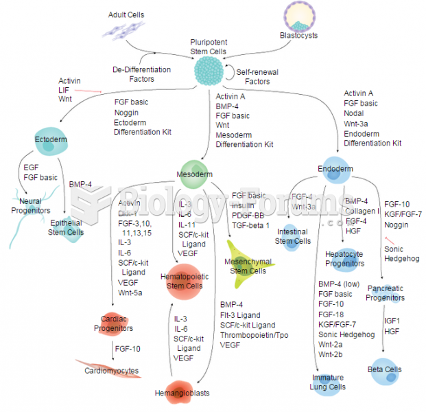 Embryonic and Induced Pluripotent Stem Cells & Lineage-specific Markers