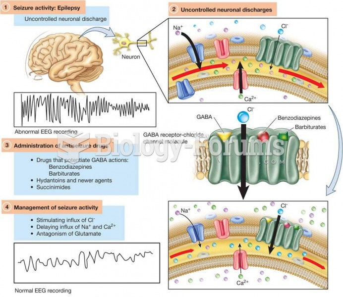 Model of the GABA Receptor–Chloride Channel Molecules in Relationship to Antiseizure Pharmacotherapy