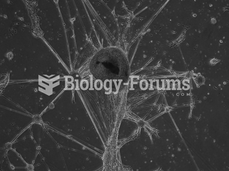 Human embryonic stem cells differentiated to neural cells