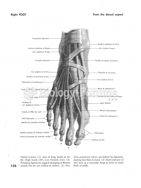Right foot from the dorsal aspect