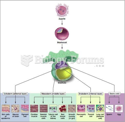 Stem cells in mammalian development