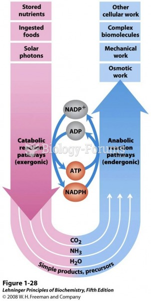 The central roles of ATP and NAD(P)H in metabolism