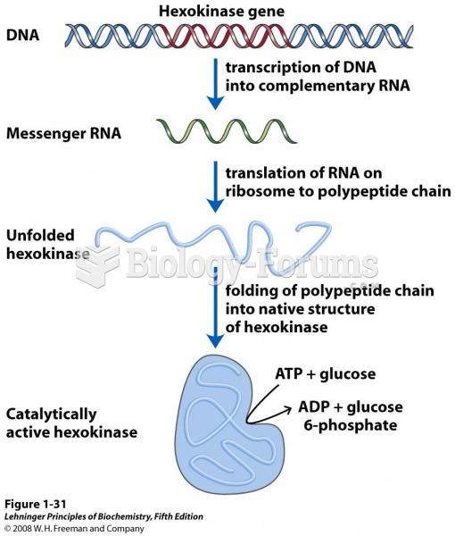 DNA to RNA to protein to enzyme (hexokinase).