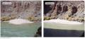 Manmade Floods Reestablish Habitat in the Grand Canyon