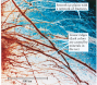 Surface Features on Europa