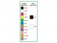English and Dani basic color terms.