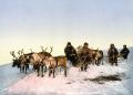 A reindeer sled, Arkhangelsk, Russia. Late nineteenth-century photochrom.