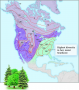 Tree species richness in North America is correlated with evapotranspiration rate.