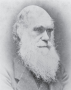 The work of Charles Darwin forms the foundation for modern evolutionary theory.