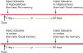 A Schematic Description of the Experiment by Maviel et al. (2004)