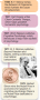 Major Events in the History of Psychology (5 of 6)