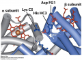 Some ion pairs that stabilize the T state of deoxyhemoglobin