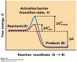 An activation barrier, representing the transition state